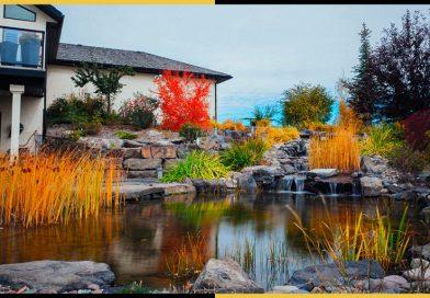 Landscape Design Story